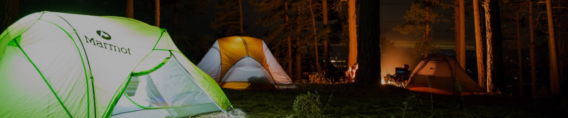 Bring in the New Year 2020 at these <br>top campsites near Mumbai and Pune