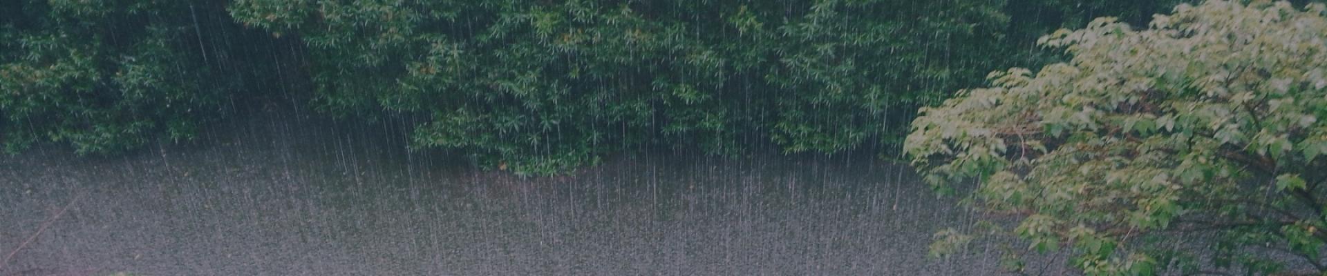 Monsoon Treks in India