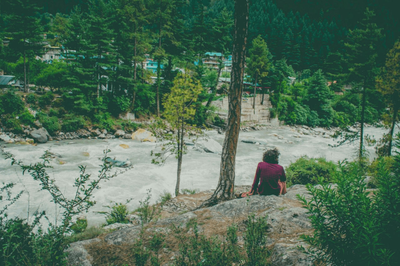 Solo trekker sits on the bank of a river in a pine forest.