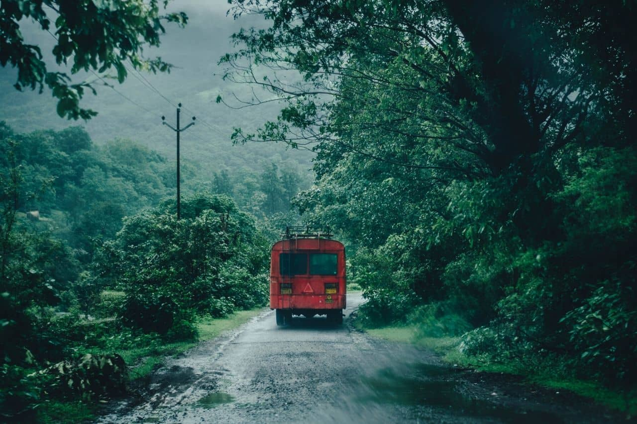 View of bus on a forested road