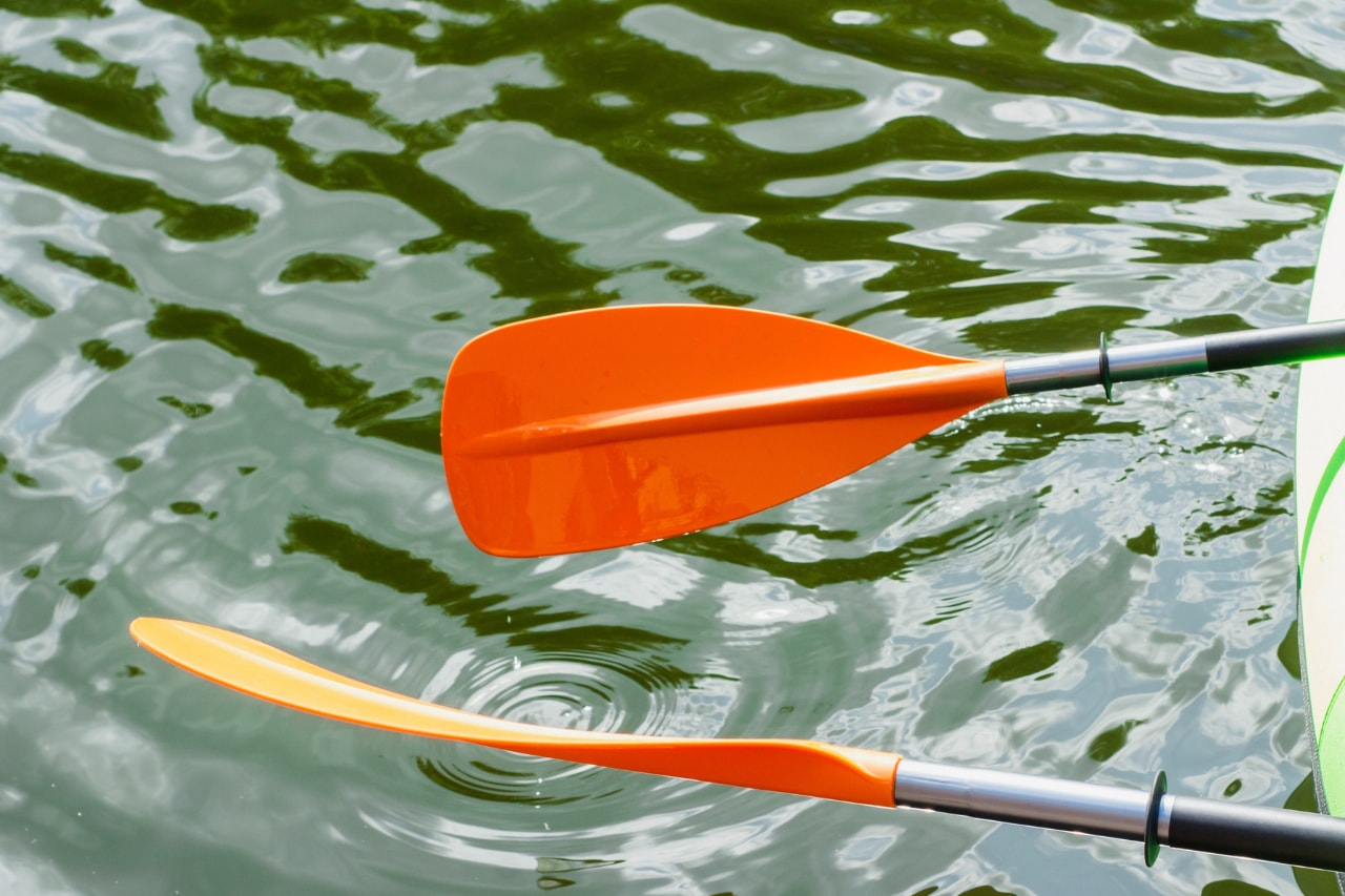 Paddles of canoe in water