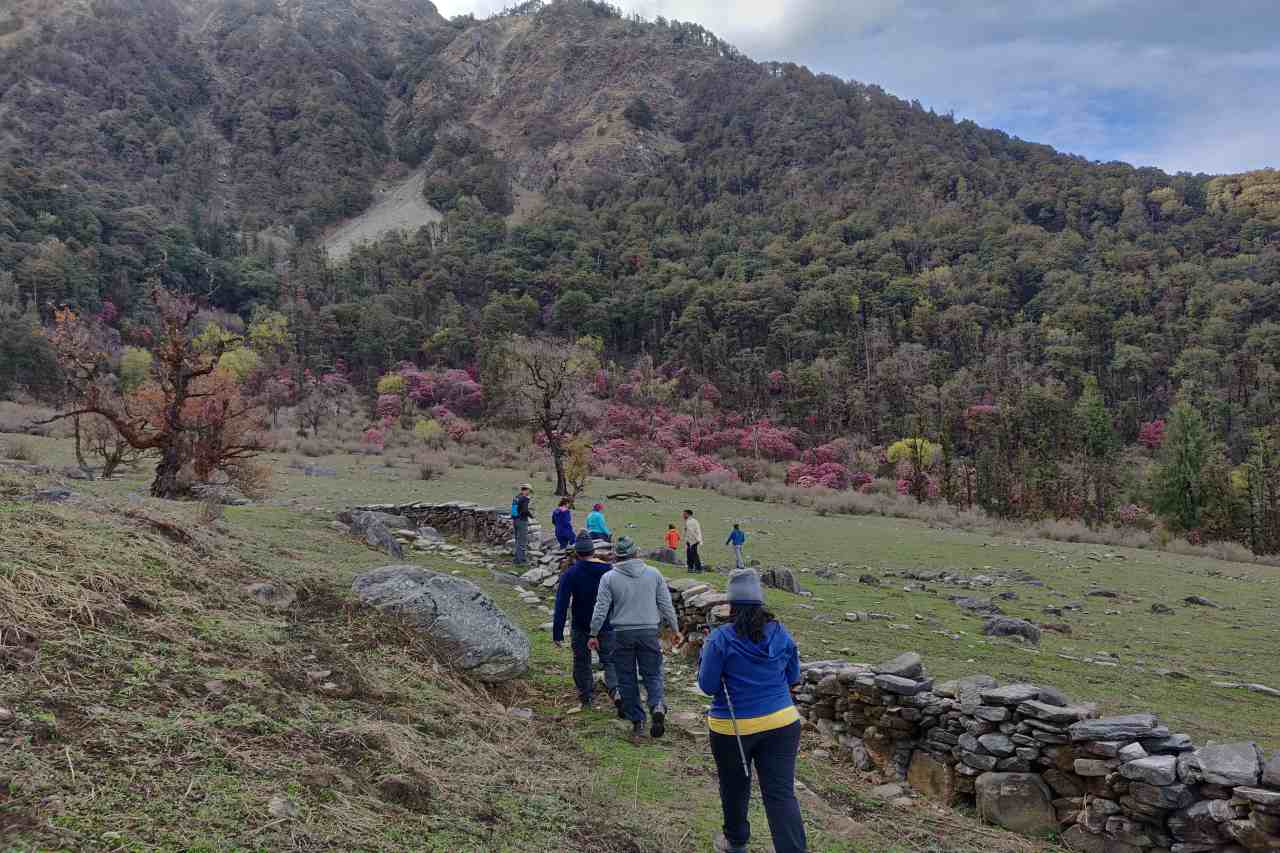 A group of trekkers walking towards a forest covered mountain