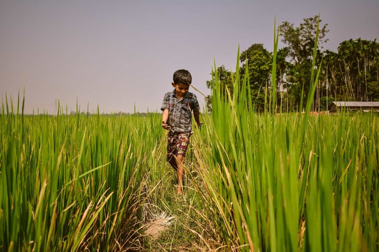A boy walks through grassy plains