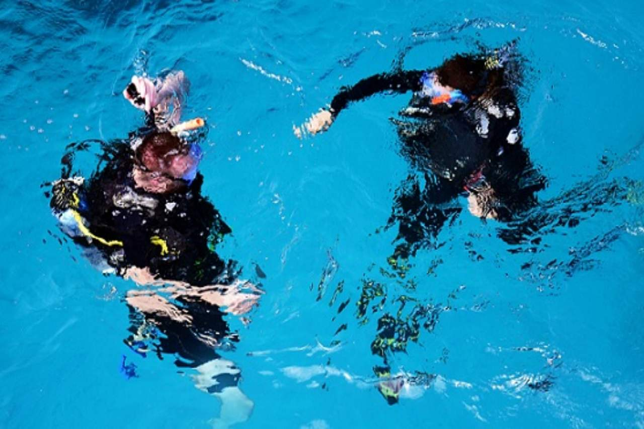 Two snorkelers in the water