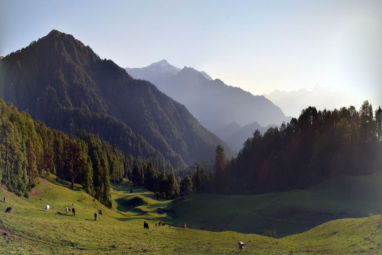 A vast green meadow and valleys with animals grazing.