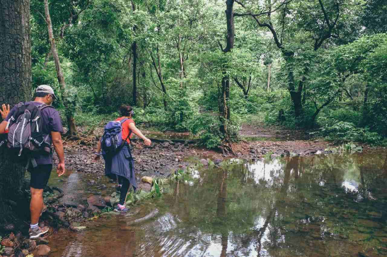 Two people crossing a puddle in a forest.