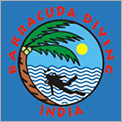 Barracuda Diving India