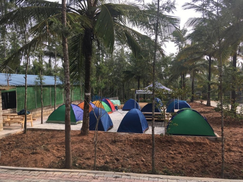 New Year's Special: Camping in Sakleshpur (Alpine Tents)