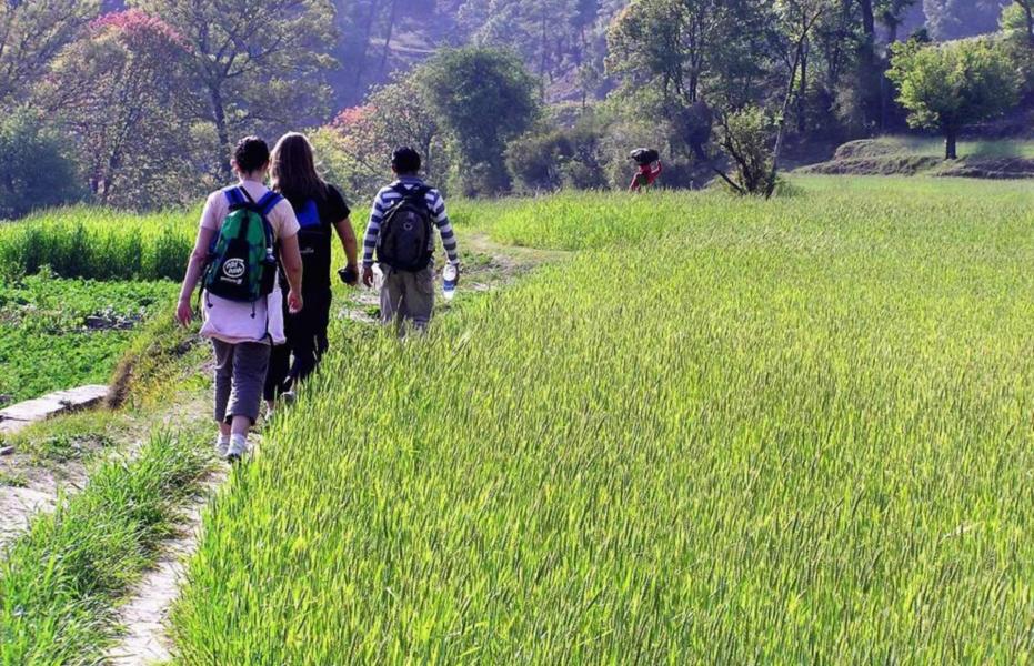 Binsar village trek with Kumaoni homestay