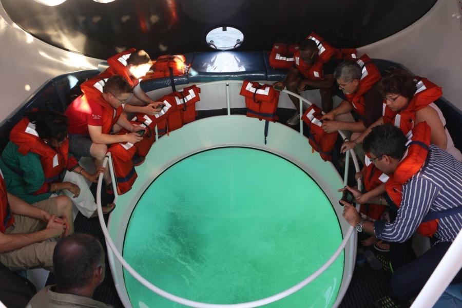 Andamans Glass Bottom Speed Boat Cruise