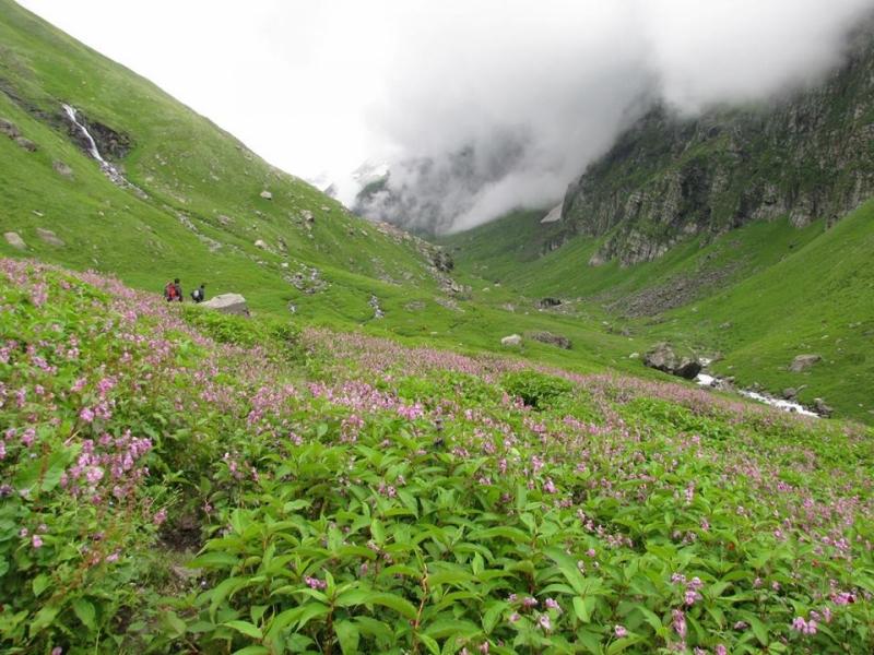 Trek to Hampta Pass