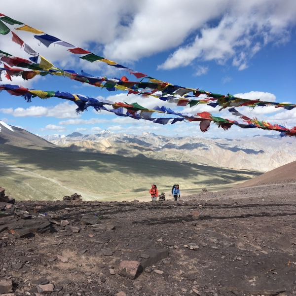 Trek to Markha Valley (with homestay)