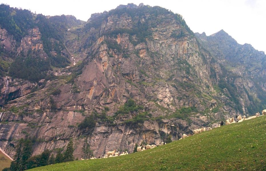 Two Days Trek to Manali Jobri