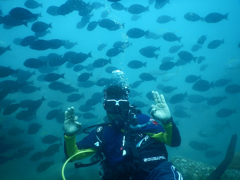 SSI Open Water Diver Course in Udupi