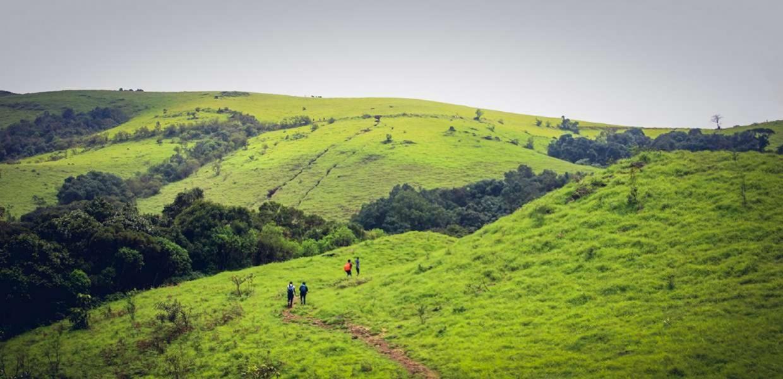 Kodachadri Peak Trek