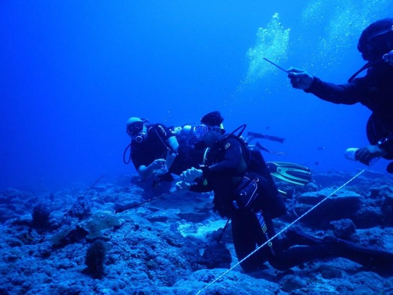 Andamans Fun Dive