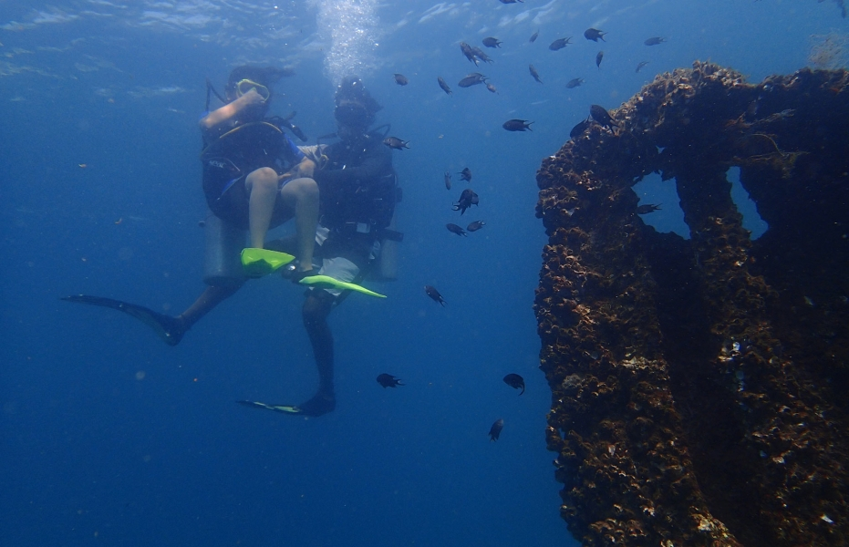 Fun Dive in Sunny Goa (for certified divers)