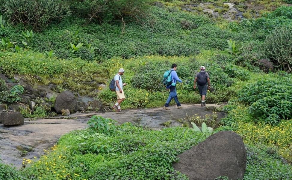 Weekend trek to Harishchandragad