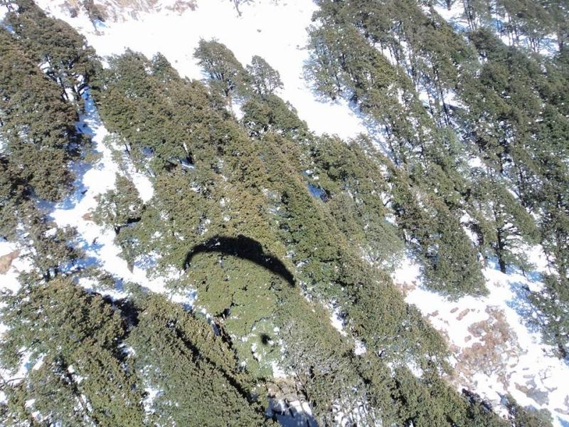 30-min tandem paragliding at Bir Biling
