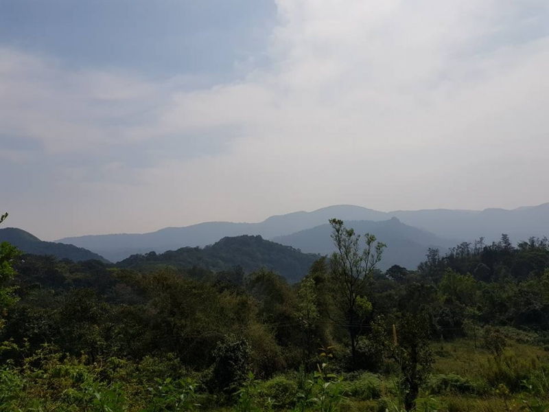 1n2d Camping in Coorg