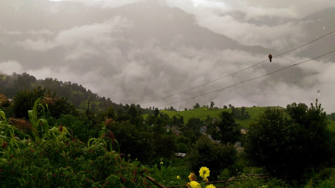 5-day Chopta trek with suite stay