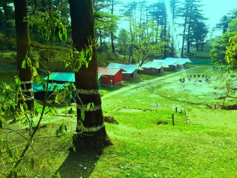 Adventure camping at Mussoorie - 1n2d