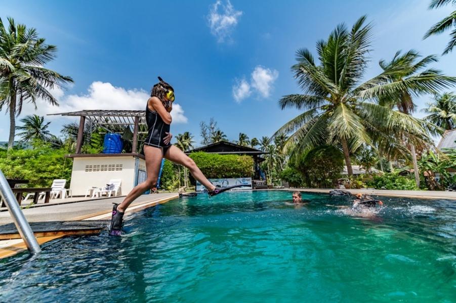 Discover Scuba Dive in Koh Phangan, Thailand (2 dives)