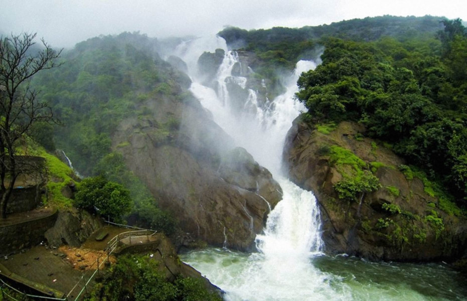 Trek to Dudhsagar Waterfall