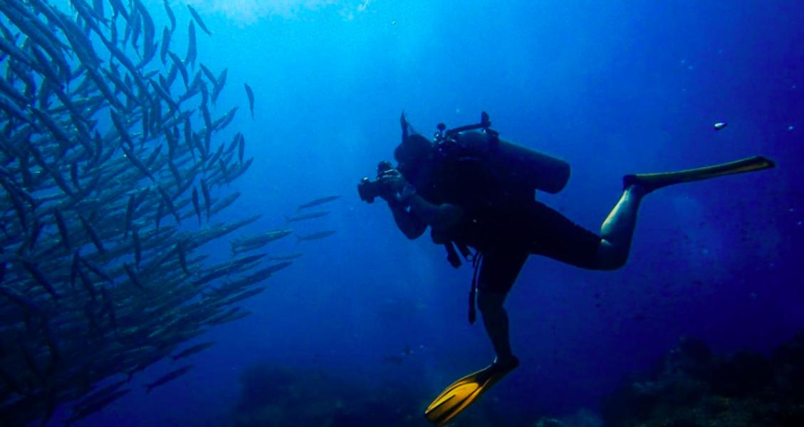 Koh Tao Overnight Dive Trip