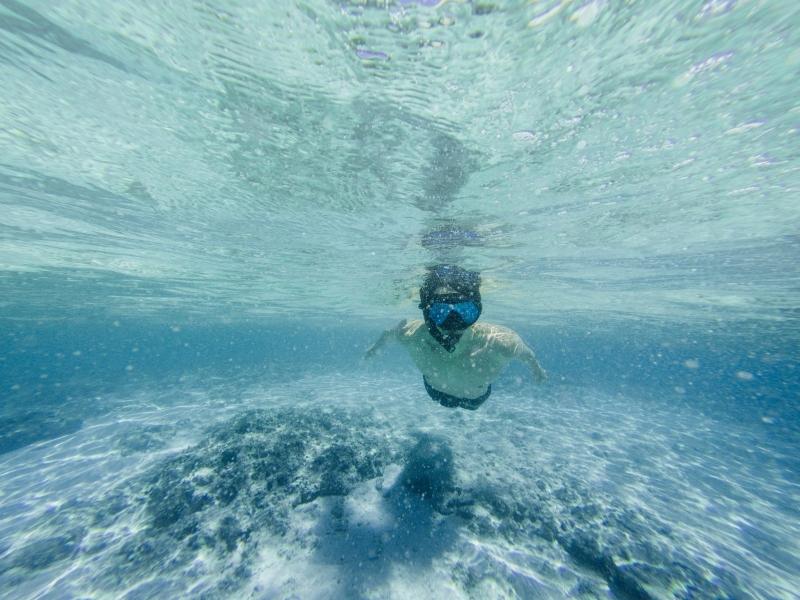 Snorkelling in Koh Tao, Thailand