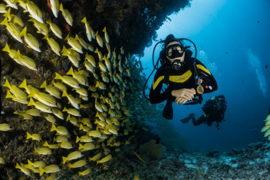 PADI Advanced Open Water Diver (AOWD) Course in Thailand