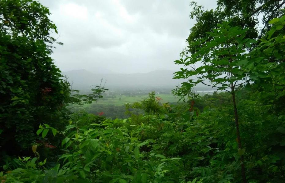 Monsoon trek to Andharban (Ex Mumbai)