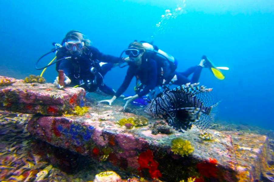 Fun Diving in Gili Meno, Bali