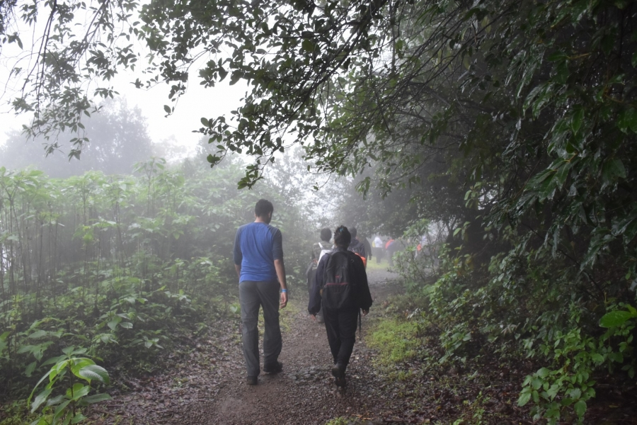 Jungle Trail to Andharban
