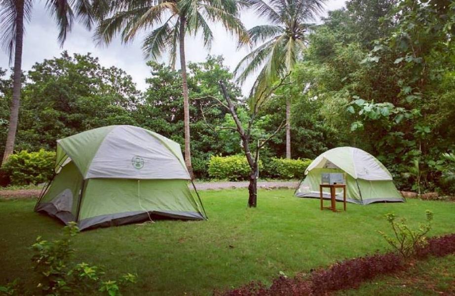 Camping near Dahanu