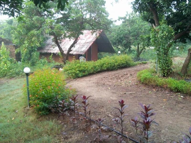 Adventure camping in Wada (1n2d)