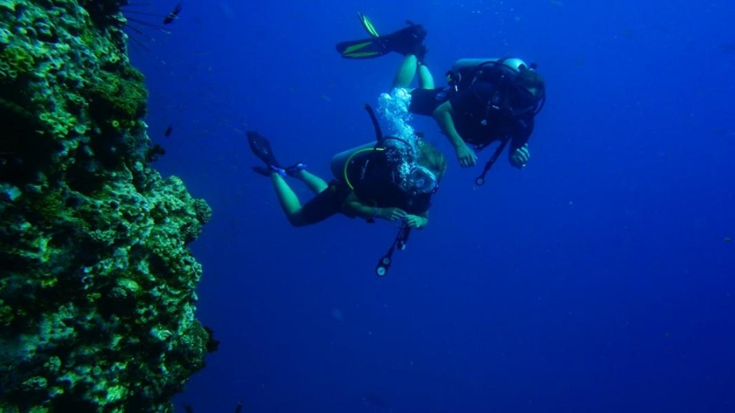PADI Scuba Diver Course in Koh Samui, Thailand