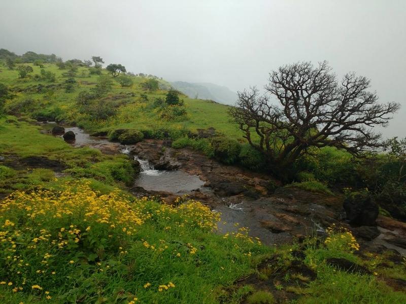 Raireshwar and Kenjulgad Trek