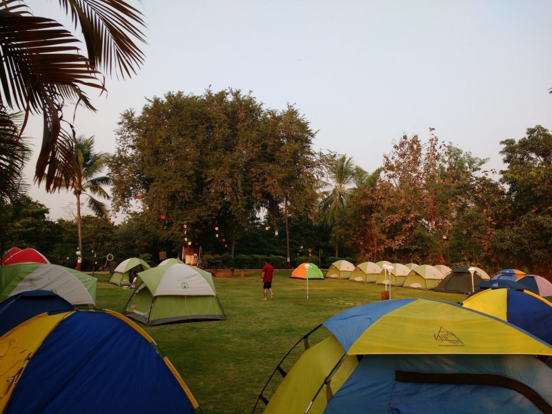 New Year 2020 camping in Dahanu | The Great Next