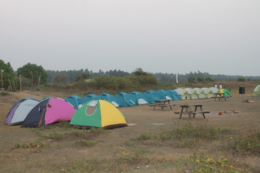 New Year Special: Alibaug Beach Camping