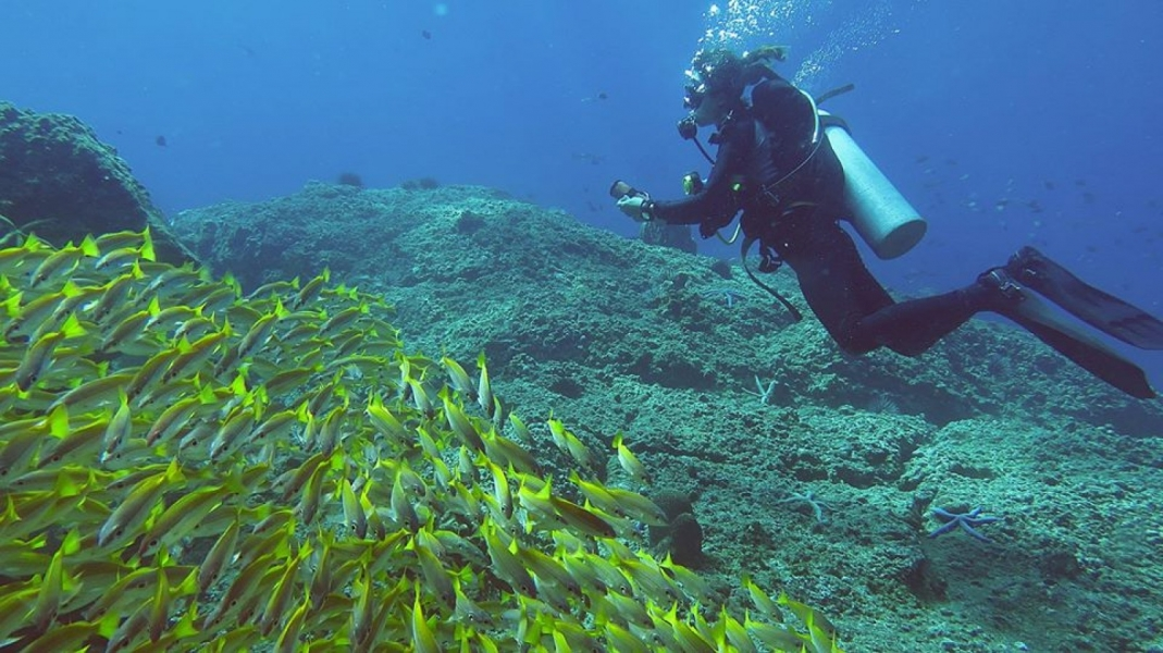 SSI Advanced Open Water Diver Course in the Phi Phi Islands