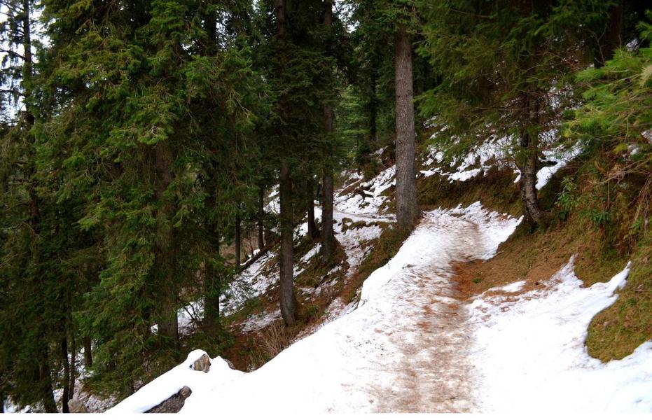 Dalhousie Winter Trek