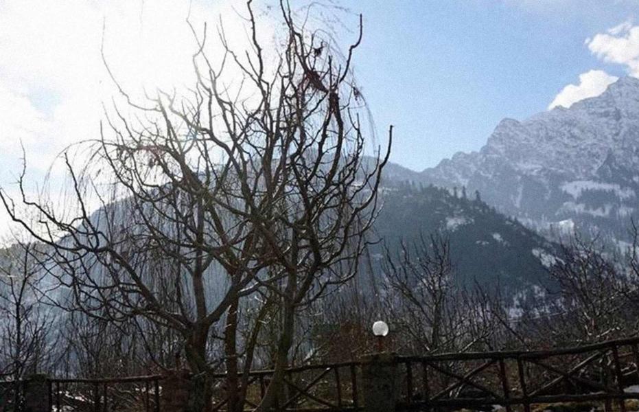 Manali Winter Trekking Expedition (4N/5D)