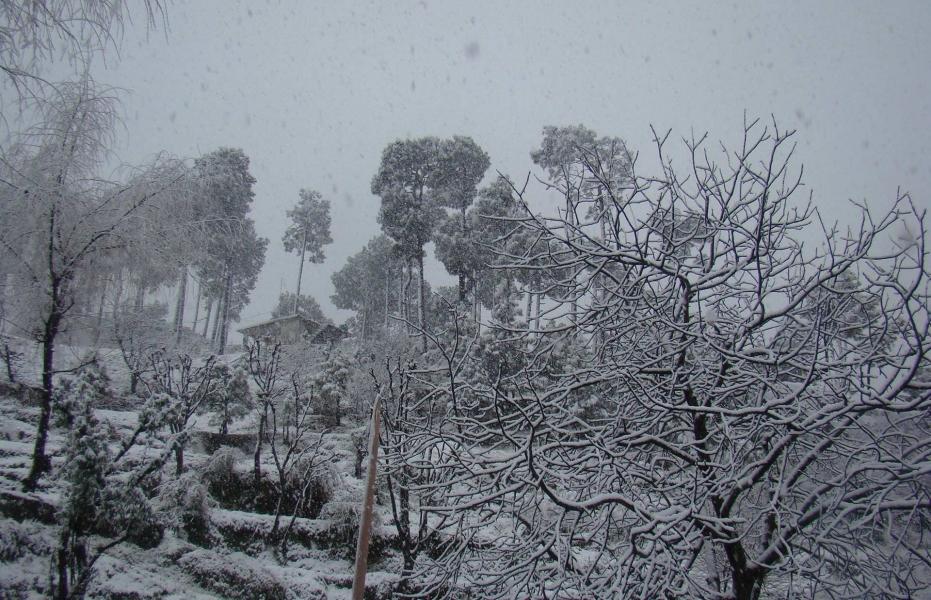 DHAULADHAR SNOW ADVENTURE (EX-PATHANKOT)