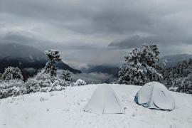 Chopta trek with Pahadi room stay