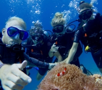 Fun Diving in Gili Air, Bali