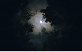 Kondana Caves Fireflies Trek