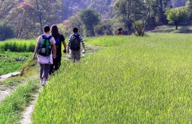 Binsar village trek with Kumaoni homestay