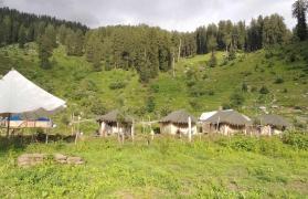 Camping near Manali (1N/2D)