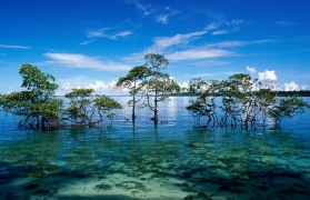 Best of the Andaman Islands including Barren and Narcondam